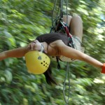 Ecological Canopy Tour Day or Night